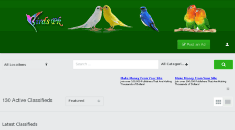 Ammco bus : Birds for sale in pakistan