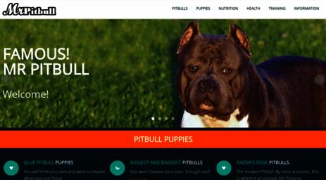 Visit Mrpitbull com - BLUE PITBULLS FOR SALE, PITBULL